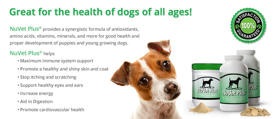 nuvet labs dogs cats vitamins supplements veterinarian recommended